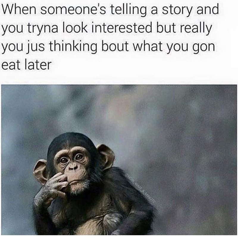 Common chimpanzee - When someone's telling a story and you tryna look interested but really you jus thinking bout what you gon eat later NOW WAIT AtINUTE