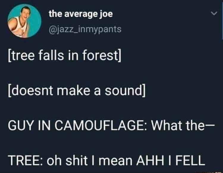 Text - the average joe @jazz_inmypants [tree falls in forest] [doesnt make a sound] GUY IN CAMOUFLAGE: What the- TREE: oh shit I mean AHH I FELL