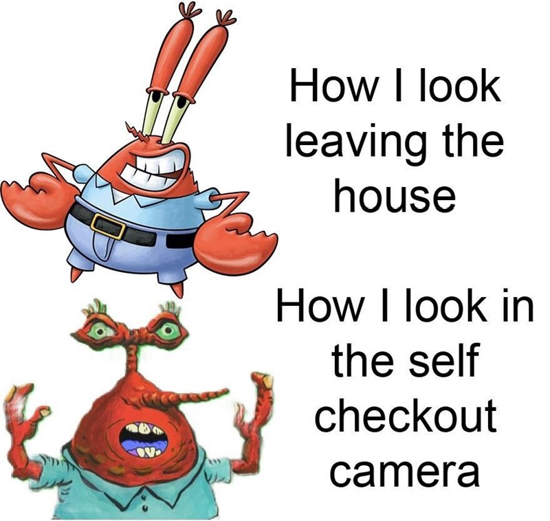 Cartoon - How I look leaving the house How I look in the self checkout camera
