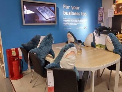 ikea shark - Room - For your business too.