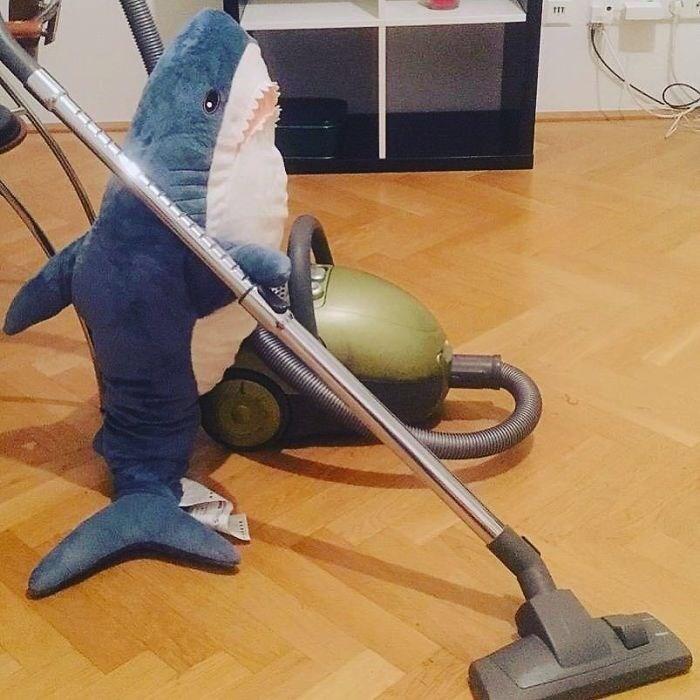ikea shark - Floor