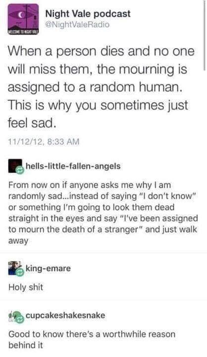 "Tumblr - ""When a person dies and no one will miss them, the mourning is assigned to a random human. This is why you sometimes just feel sad. 11/12/12, 8:33 AM hells-little-fallen-angels From now on if anyone asks me why I am randomly sad...instead of saying ""I don't know"" or something I'm going to look them dead straight in the eyes and say ""I've been assigned to mourn the death of a stranger"" and just walk away king-emare Holy shit cupcakeshakesnake Good to know"""