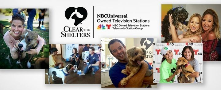 clear the shelters - Community - NBCUniversal Owned Television Stations NBC Owned Television Stations Telemundo Station Group CLEAR THE SHELTERS 40 40 D ELEMNDO CLEAE Sim ART TER 40 40 OTELE
