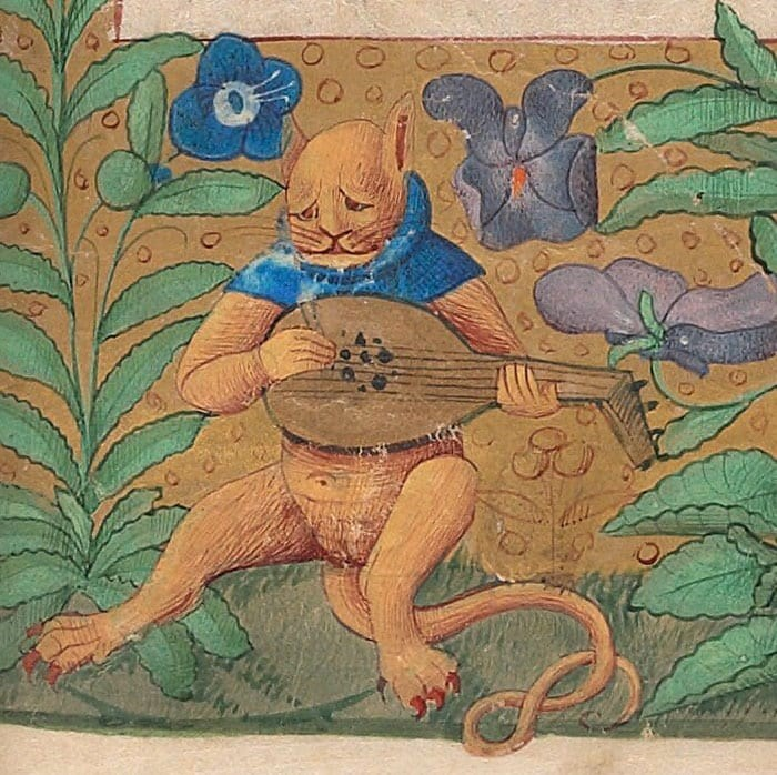 medieval cat art - Illustration