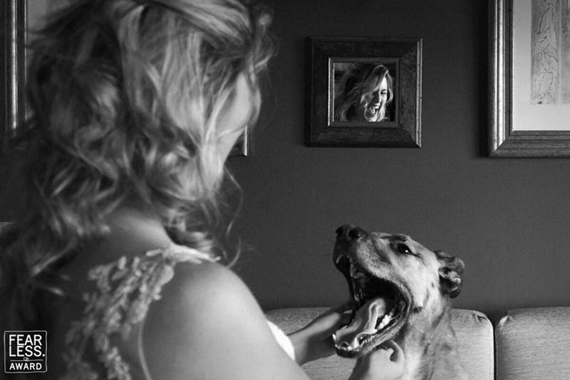 wedding dog - Photograph - FEAR LESS. AWARD