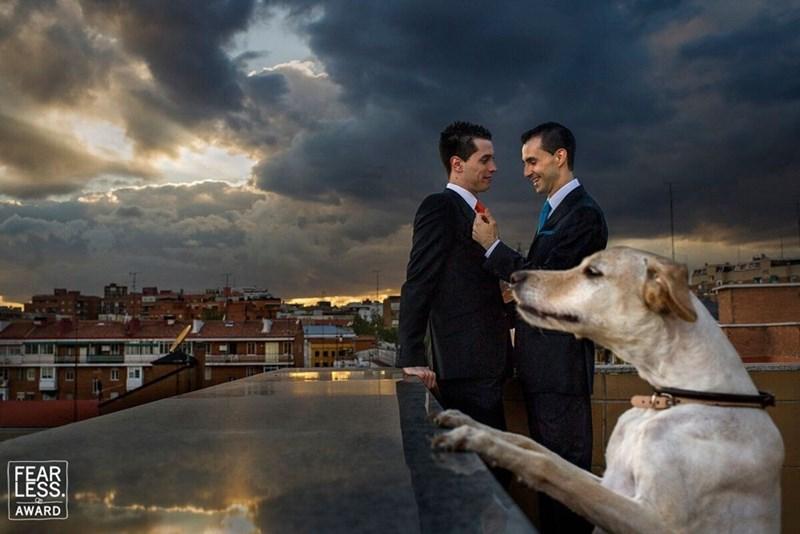 wedding dog - Photograph - FEAE AWARD