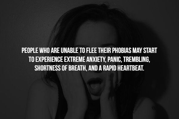 phobia - Hair - PEOPLE WHO ARE UNABLE TO FLEE THEIR PHOBIAS MAY START TO EXPERIENCE EXTREME ANXIETY, PANIC, TREMBLING, SHORTNESS OF BREATH, AND A RAPID HEARTBEAT