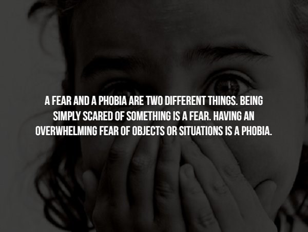 phobia - Face - A FEAR AND A PHOBIA ARE TWO DIFFERENT THINGS. BEING SIMPLY SCARED OF SOMETHING IS A FEAR. HAVING AN OVERWHELMING FEAR OF OBJECTS OR SITUATIONS IS A PHOBIA.
