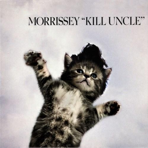 "kitten covers - Cat - MORRISSEY ""KILL UNCLE"""
