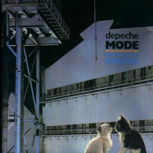 kitten covers - Cat - depeche MODE