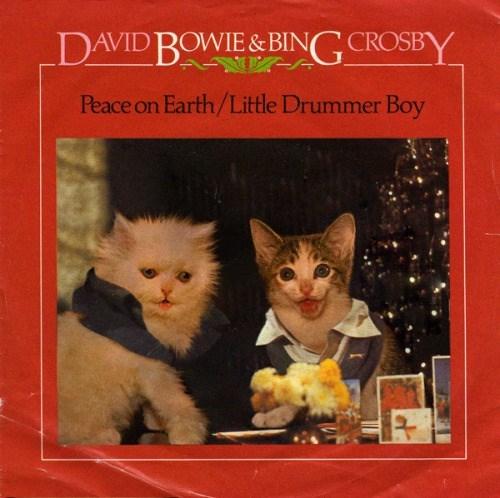 kitten covers - Cat - DAVID BOWIE&BING CROSBY Peace on Earth/Little Drummer Boy