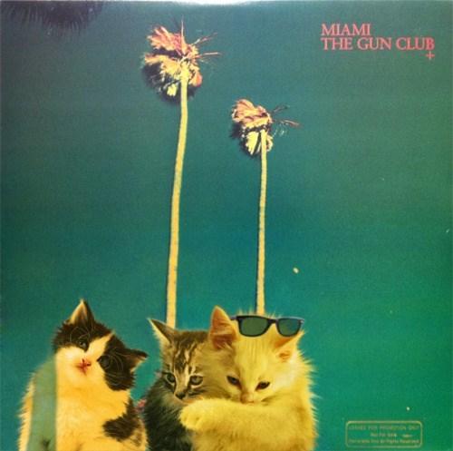 kitten covers - Cat - MIAMI THE GUN CLUB