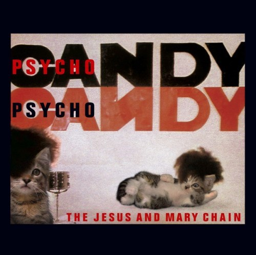 kitten covers - Text - ANDY ADY PSTCHO PSYCHO THE JESUS AND MARY CHAIN