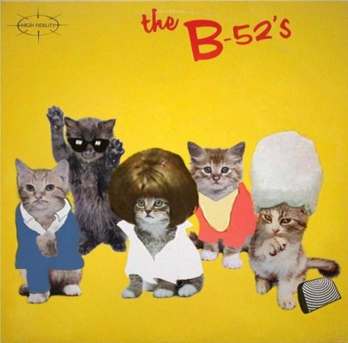 kitten covers - Cat - the В525 нюн ноELITУ-