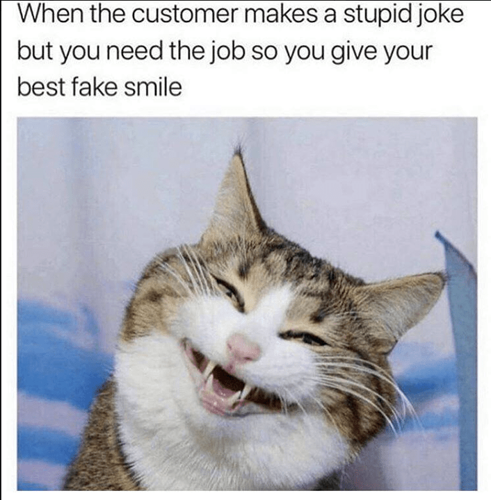 cat meme about that fake smile you gotta do to customers to keep your job