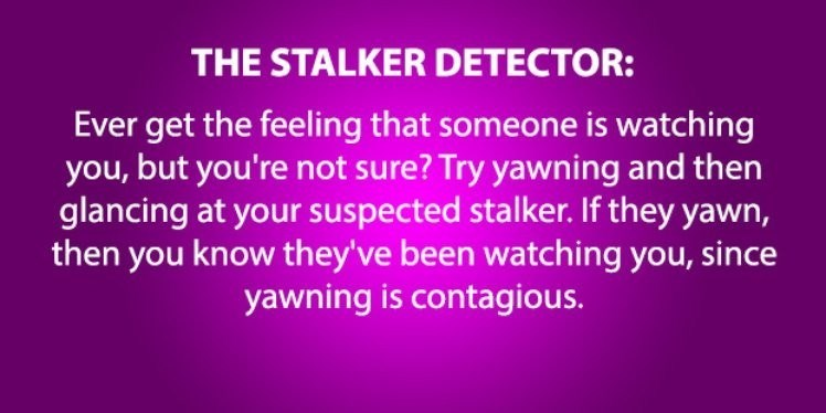 life hack - Text - THE STALKER DETECTOR: Ever get the feeling that someone is watching you,but you're not sure? Try yawning and then glancing at your suspected stalker. If they yawn, then you know they've been watching you, since yawning is contagious.