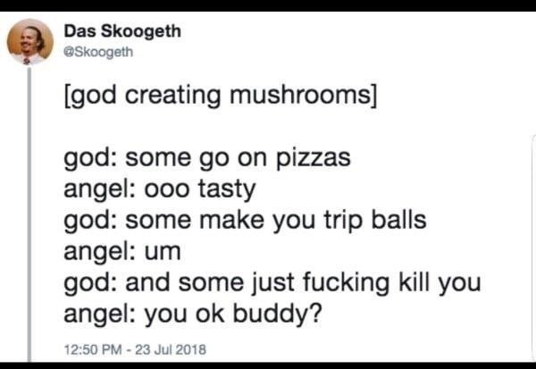 troll - Text - Das Skoogeth eSkoogeth [god creating mushrooms] god: some go on pizzas angel: ooo tasty god: some make you trip balls angel: um god: and some just fucking kill you angel: you ok buddy? 12:50 PM-23 Jul 2018