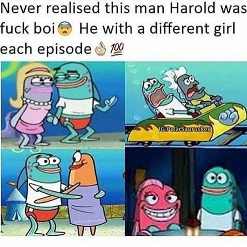 Spongebob Meme - Cartoon - Never realised this man Harold was fuck boi He with a different girl each episode 00 IG:POlarSaurasRex V