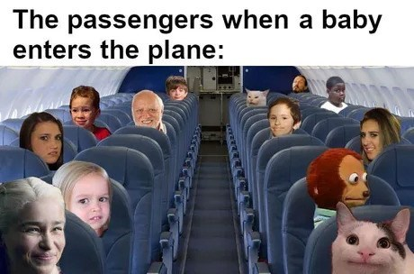 meme - Passenger - The passengers when a baby enters the plane: