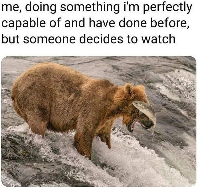 meme - Brown bear - me, doing something i'm perfectly capable of and have done before, but someone decides to watch