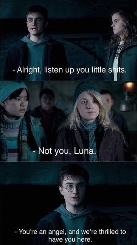 meme - Movie - - Alright, listen up you little shits. Not you, Luna. - You're an angel, and we're thrilled to have you here.