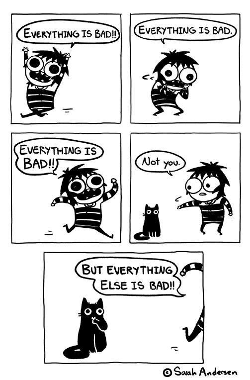 animal meme - White - EVERYTHING IS BAD. EVERYTHING IS BAD!) EVERYTHING IS BADI! Not you. BUT EVERYTHING, ELSE IS BAD!! O OSaah Andersen