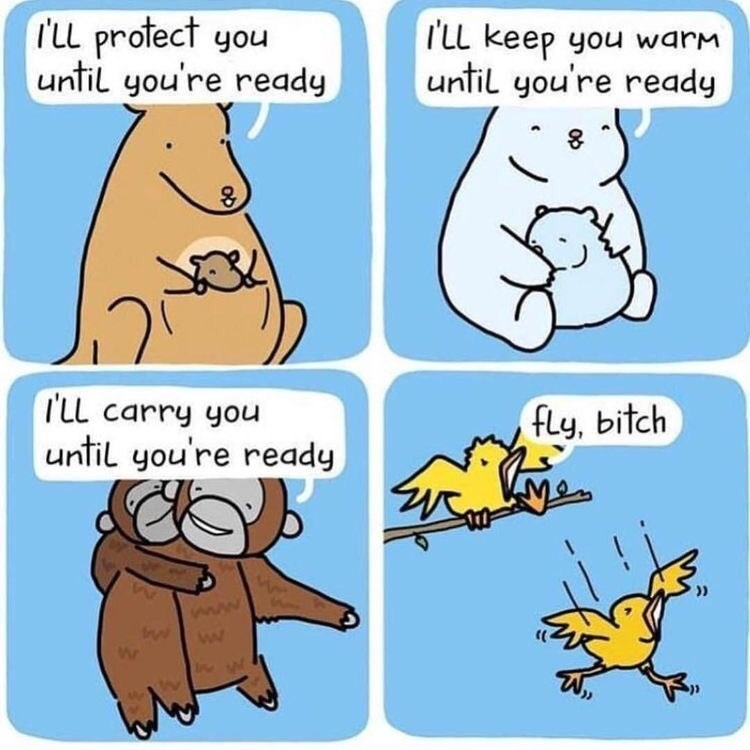 animal meme - Cartoon - rLL protect you until you're ready TLL keep you warM until you're ready l'LL carry you fly, bitch until you're ready ))