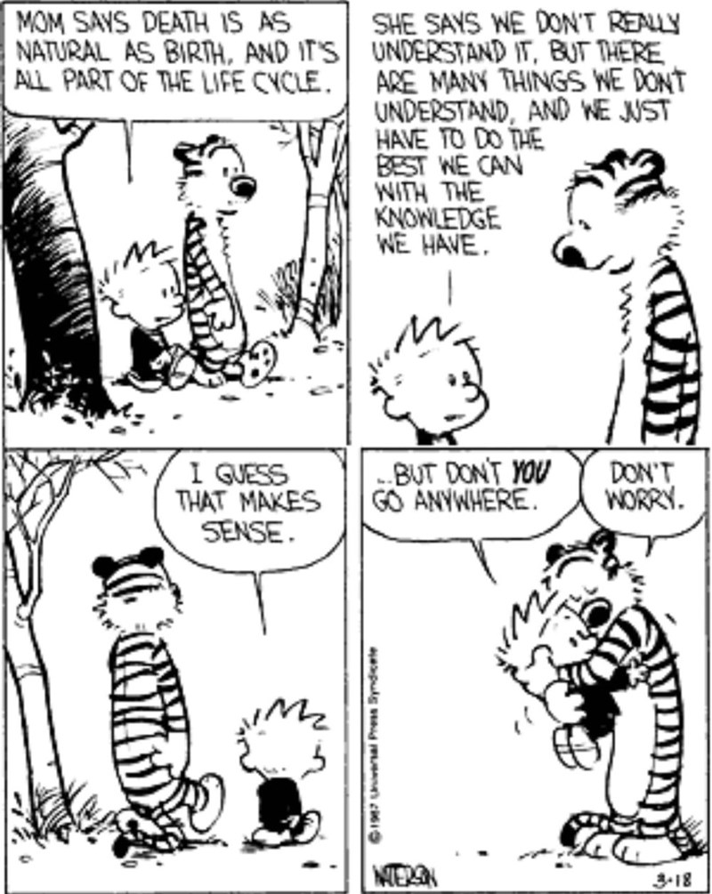 """Calvin and Hobbes - """"MOM SAYS DEATH IS AS NATURAL AS BIRTH, AND IT'S UNDERSTAND IT, BUT THERE ALL PART OF THE LIFE CYCLE. SHE SAYS WE DONT REALY ARE MANY THINGS WE DONT UNDERSTAND, AND WE JUST HAVE TO DO THE BEST WE CAN NITH THE KNOWLEDGE WE HAVE BUT DONT YOU GO ANYWHERE I GUESS THAT MAKES SENSE DON'T WORRY"""""""