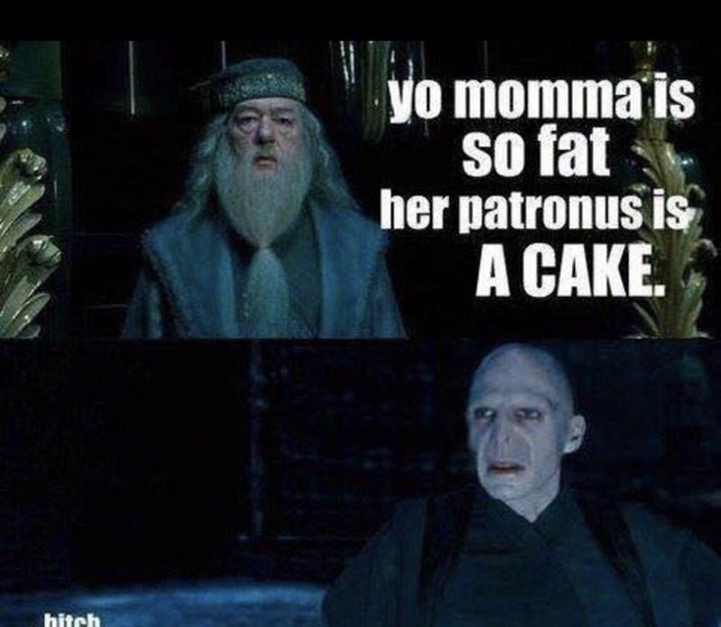"""Meme - """"Yo momma is so fat her patronus is A CAKE."""""""
