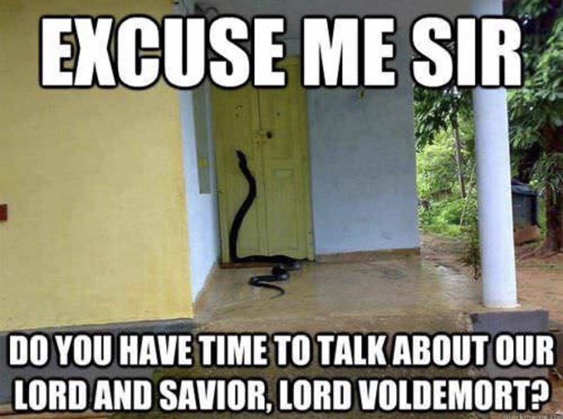 Photo caption - EXCUSE ME SIR DO YOU HAVE TIMETO TALK ABOUT OUR LORDAND SAVIOR, LORD VOLDEMORT?