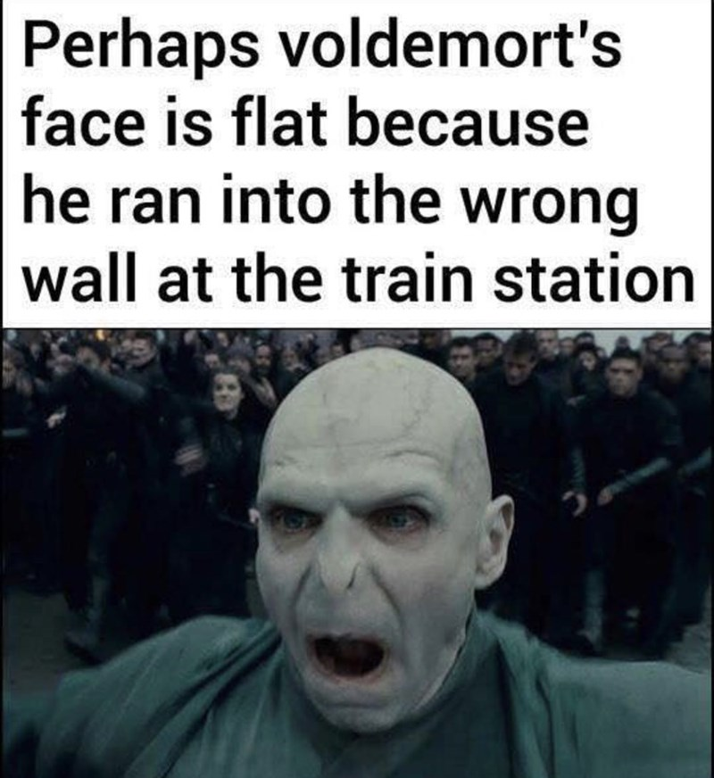 People - Perhaps voldemort's |face is flat because he ran into the wrong wall at the train station