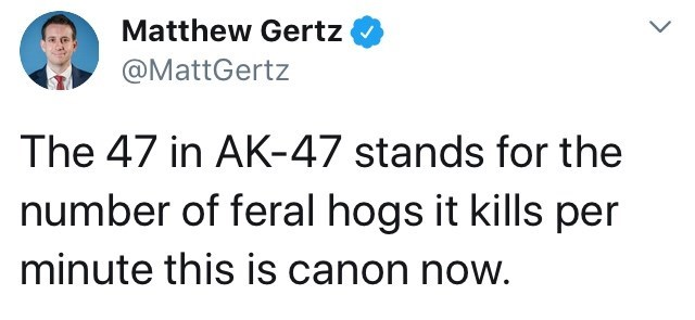 Text - Matthew Gertz @MattGertz The 47 in AK-47 stands for the number of feral hogs it kills per minute this is canon now.