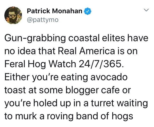 Text - Patrick Monahan @pattymo Gun-grabbing coastal elites have no idea that Real America is on Feral Hog Watch 24/7/365. Either you're eating avocado toast at some blogger cafe or you're holed up in a turret waiting to murk a roving band of hogs