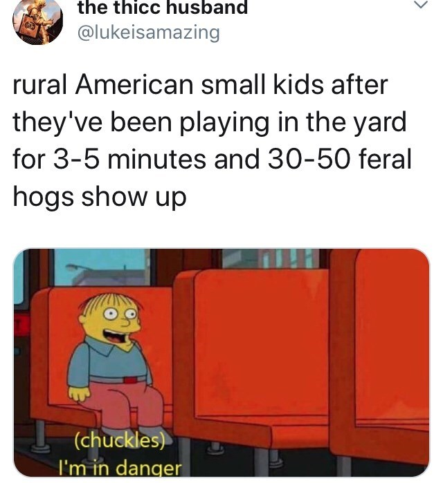 Fictional character - the thicc husband @lukeisamazing rural American small kids after they've been playing in the yard for 3-5 minutes and 30-50 feral hogs show up (chuckles) I'm in danger