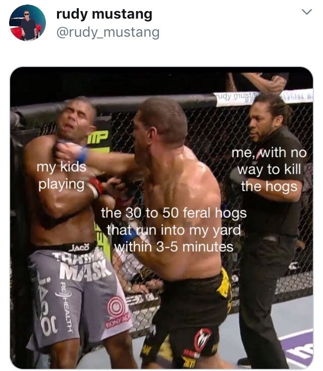 Professional boxer - rudy mustang @rudy_mustang udy mustamg G IP me,with no my kids playing way to kill the hogs the 30 to 50 feral hogs that run into my yard ASWthin 3-5 minutes MAS JACO CONYAC )HEALTH