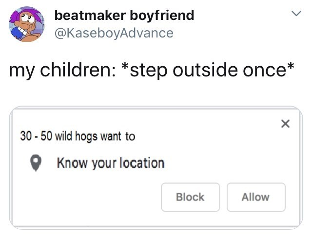 Text - beatmaker boyfriend @KaseboyAdvance my children: *step outside once* 30-50 wild hogs want to Know your location Block Allow X
