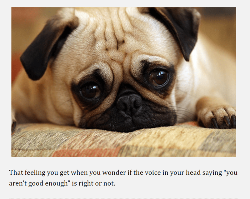 "pug - Dog - That feeling you get when you wonder if the voice in your head saying ""you aren't good enough"" is right or not."