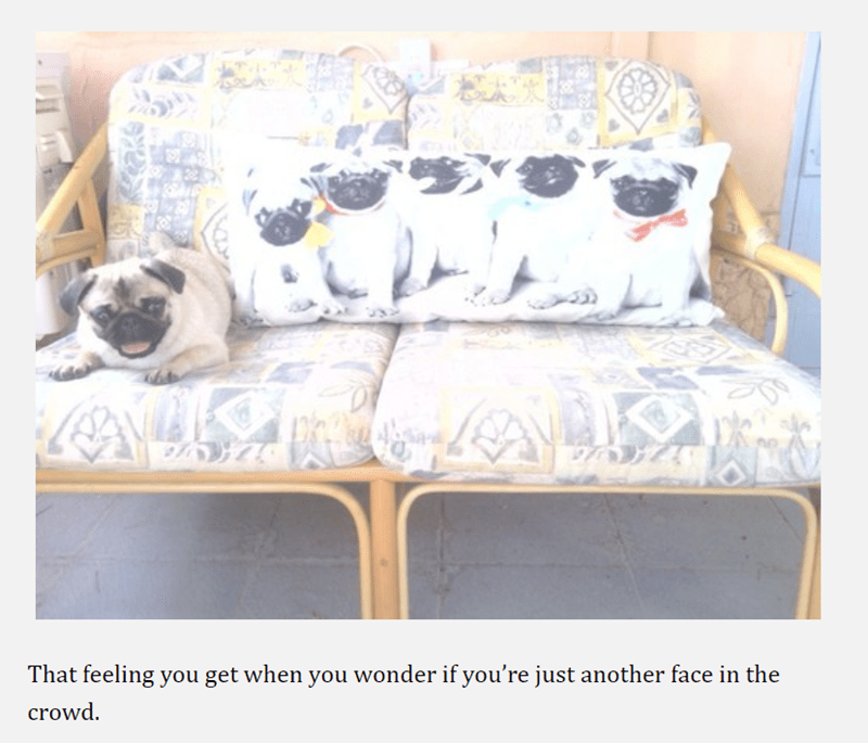 pug - Furniture - That feeling you get when you wonder if you're just another face in the crowd