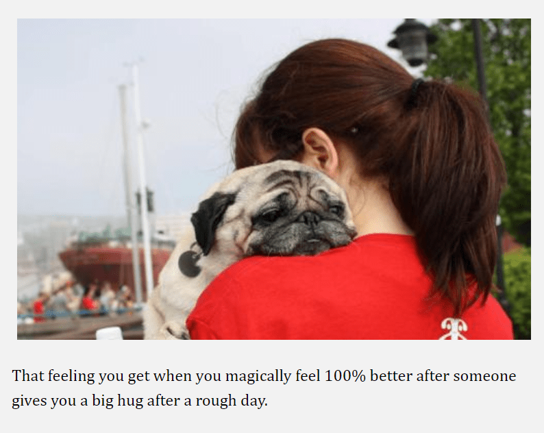 pug - Dog - That feeling you get when you magically feel 100% better after someone gives you a big hug after a rough day.