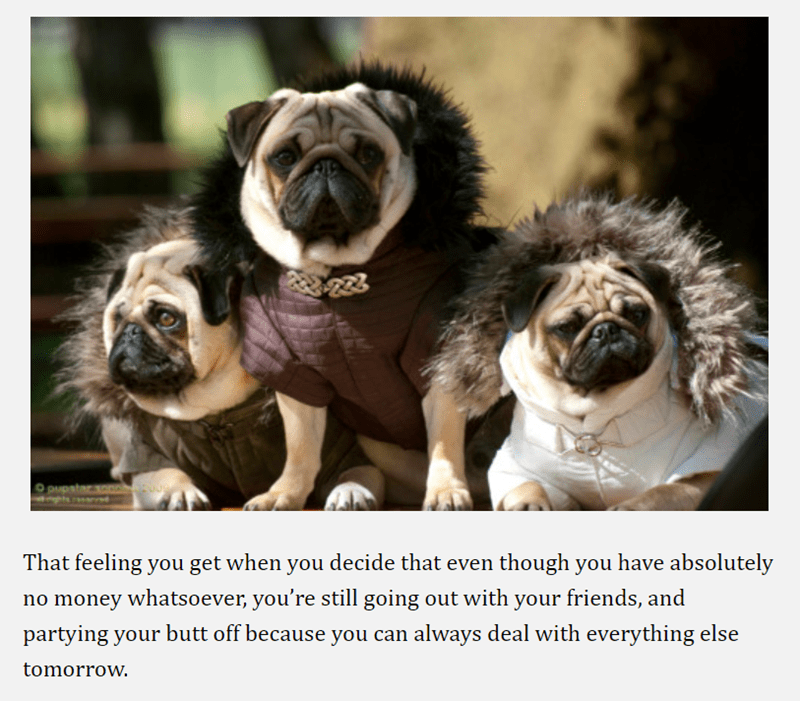 pug - Pug - That feeling you get when you decide that even though you have absolutely no money whatsoever, you're still going out with your friends, and partying your butt off because you can always deal with everything else tomorrow.