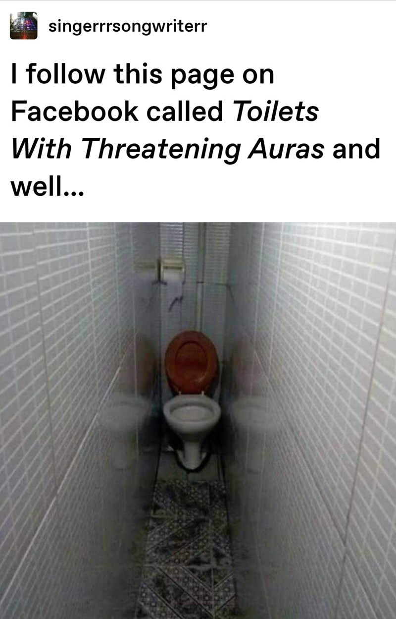 cursed images - Toilet - singerrrsongwriterr I follow this page on Facebook called Toilets With Threatening Auras and well...