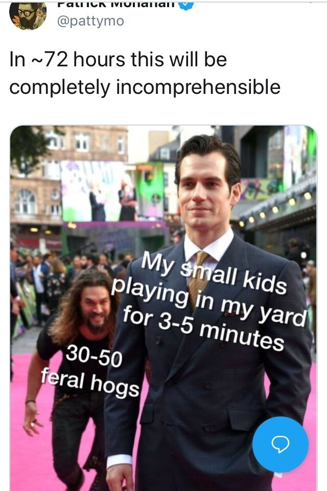 feral hog memes - Text - ranC IMIOTiania @pattymo In ~72 hours this will be completely incomprehensible My small kids playing in my yard for 3-5 minutes 30-50 feral hogs