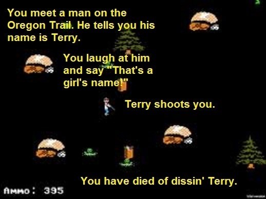 """Text - You meet a man on the Oregon Trail. He tells you his name is Terry. You laugh at him and say That's a girl's name!"""" Terry shoots you. You have died of dissin' Terry. AMMO 395"""