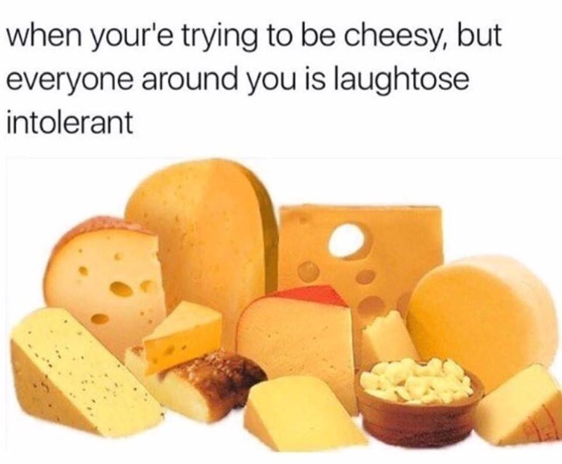 Processed cheese - when your'e trying to be cheesy, but everyone around you is laughtose intolerant
