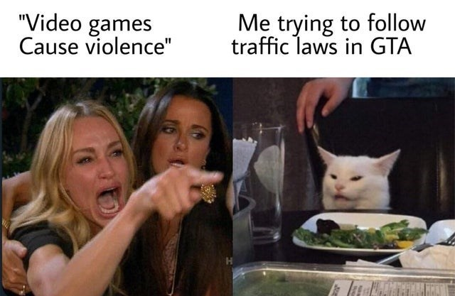 """video game violence - Facial expression - """"Video games Cause violence"""" Me trying to follow traffic laws in GTA"""
