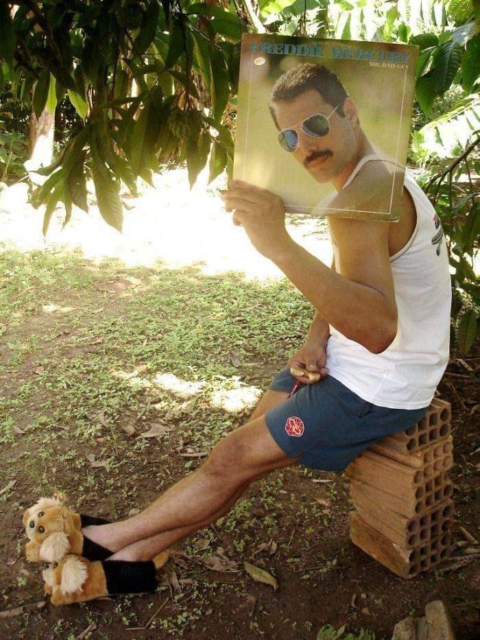 Picture - Freddie Mercury album
