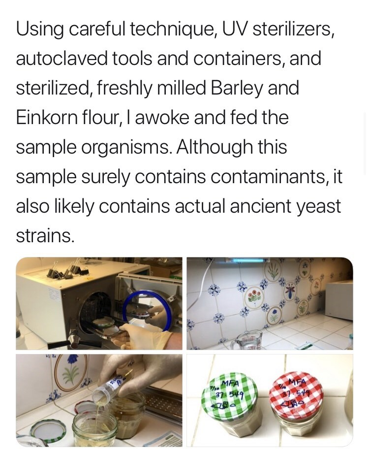 Font - Using careful technique, UV sterilizers, autoclaved tools and containers, and sterilized, freshly milled Barley and Einkorn flour, I awoke and fed the sample organisms. Although this sample surely contains contaminants, it also likely contains actual ancient yeast strains. MFA 37 549
