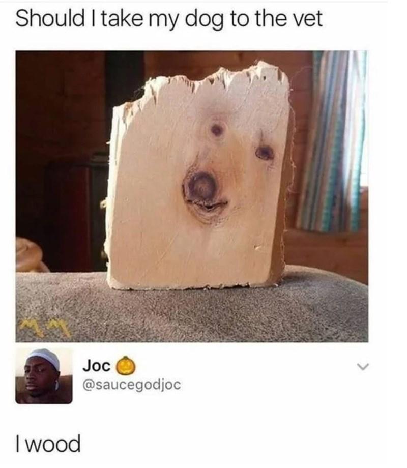 "Meme - ""Should I take my dog to the vet; I wood"""
