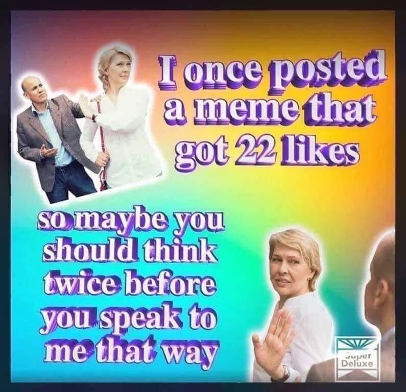 Text - I once posted a meme that got 22 likes SOmaybe you should think twice before you speak to me that way Deluxe