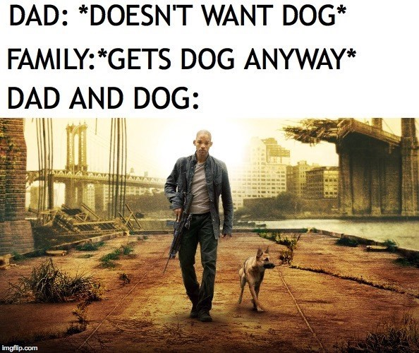Text - DAD: *DOESNT WANT DOG* FAMILY:*GETS DOG ANYWAY* DAD AND DOG: imgflp.com